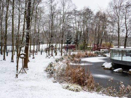 Wintery scene outside 'Woodview'